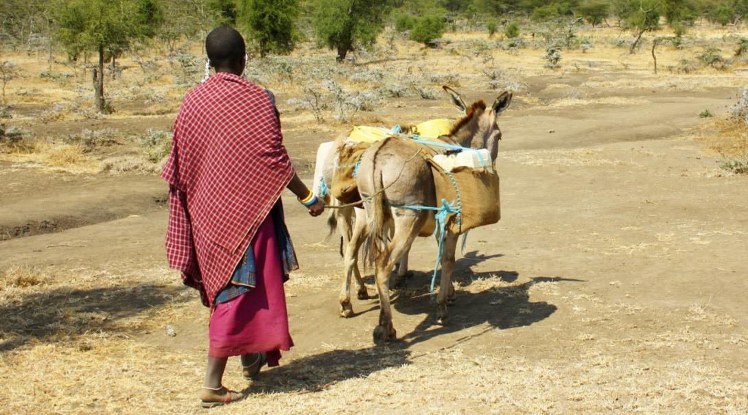 タンザニアのマサイ族とロバ